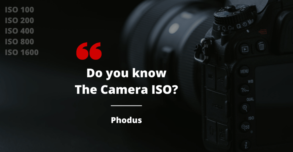 What is Camera ISO in Photography?